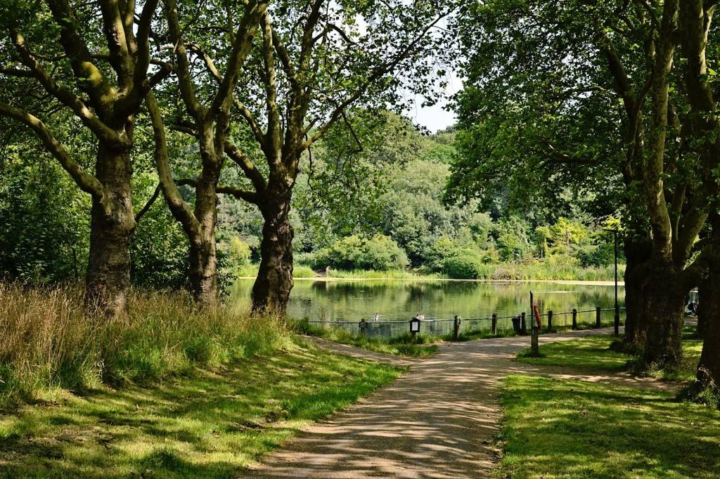 парк Hampstead Heath Хэмпстед Хит в Лондоне фото Англия